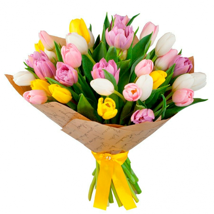 Тюльпаны микс 2