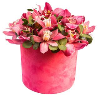 Цветы в коробке «Орхидеи»